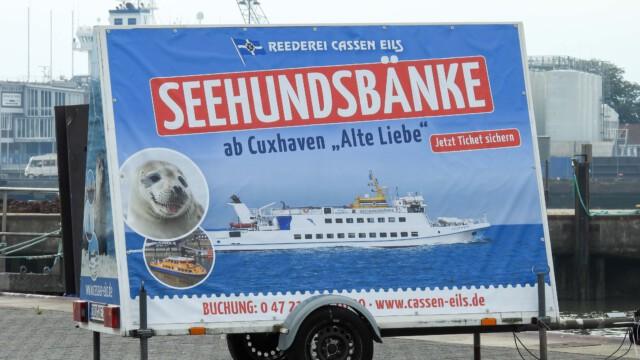 Seehundsbaenke - Stadtrundfahrt Cuxhaven mit dem Cuxliner Cuxhaven
