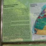wernerwald 3 150x150 - Finkenmoor Sahlenburg im Wernerwald Sahlenburg [ Bilder ]