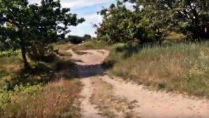 Duhner Heide Cuxhaven mit Entdeckungspfad Duhner Heide [ Video ]