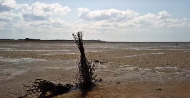 ebbe - Duhner Heide Cuxhaven mit Entdeckungspfad Duhner Heide [ Video ]