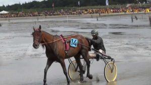 Pferderennen Video – Duhner Wattrennen 2013