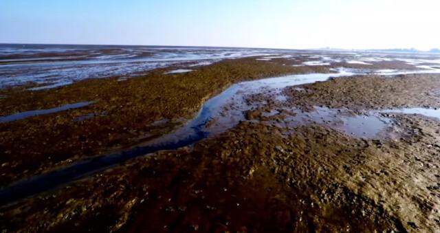 Ebbe vor Cuxhaven Duhnen 2 - Ebbe vor Cuxhaven Duhnen - Wanderung auf dem Meeresgrund [ Video ]
