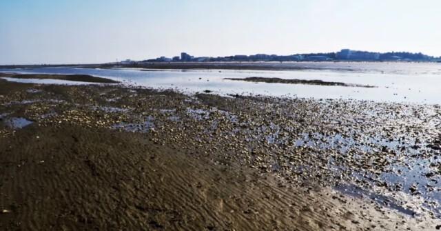 Ebbe vor Cuxhaven Duhnen 5 - Ebbe vor Cuxhaven Duhnen - Wanderung auf dem Meeresgrund [ Video ]