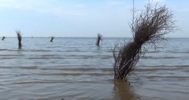 Gezeiten Ebb und Flut 3 - Ebbe und Flut Nordsee in Cuxhaven-Duhnen   Gezeiten der Nordsee [ Video ]