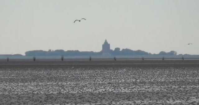 Nordsee Urlaub Wattwandern Cuxhaven Duhnen 1 - Nordsee Urlaub - Wattwandern Cuxhaven Duhnen
