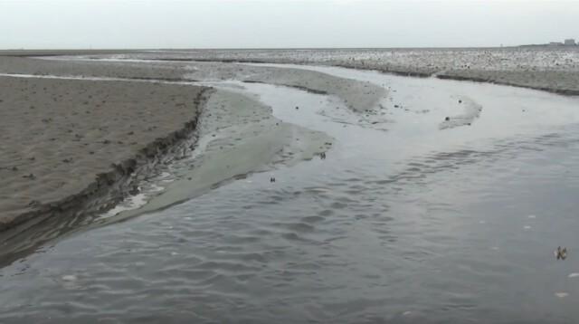 Nordsee Urlaub Wattwandern Cuxhaven Duhnen 11 - Nordsee Urlaub - Wattwandern Cuxhaven Duhnen