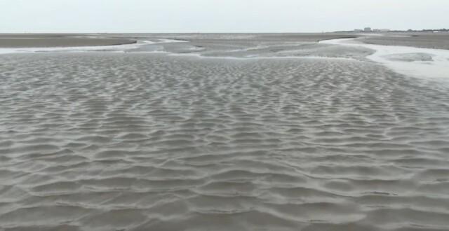 Nordsee Urlaub Wattwandern Cuxhaven Duhnen 2 - Nordsee Urlaub - Wattwandern Cuxhaven Duhnen