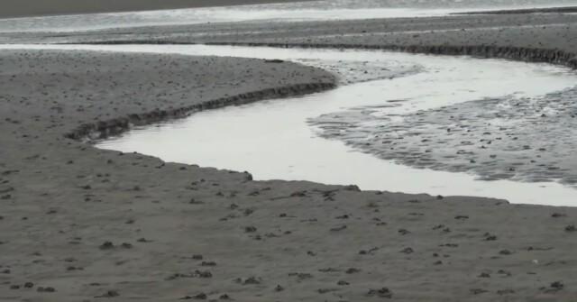 Nordsee Urlaub Wattwandern Cuxhaven Duhnen 7 - Nordsee Urlaub - Wattwandern Cuxhaven Duhnen