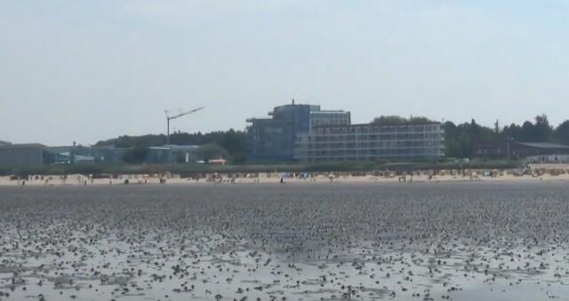 cuxhaven tourismus 1 - Cuxhaven Watt im Nordseeheilbad Cuxhaven [ Video ]