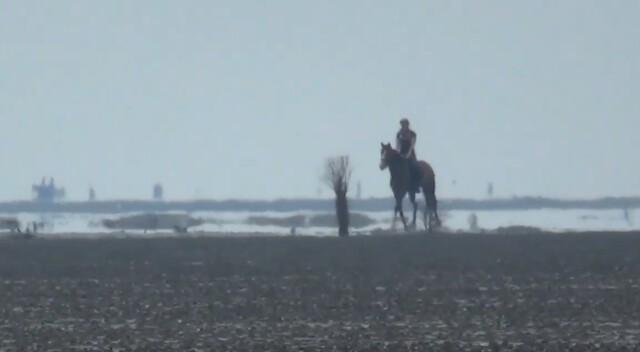 cuxhaven tourismus 4 - Cuxhaven Watt im Nordseeheilbad Cuxhaven [ Video ]