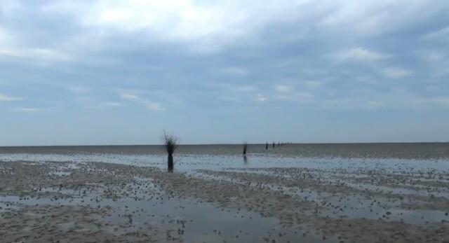 cuxhaven tourismus 5 - Cuxhaven Watt im Nordseeheilbad Cuxhaven [ Video ]
