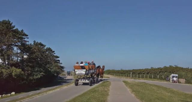 Der Wattwagen fährt von Duhnen aus nach Neuwerk - Cux Tourismus