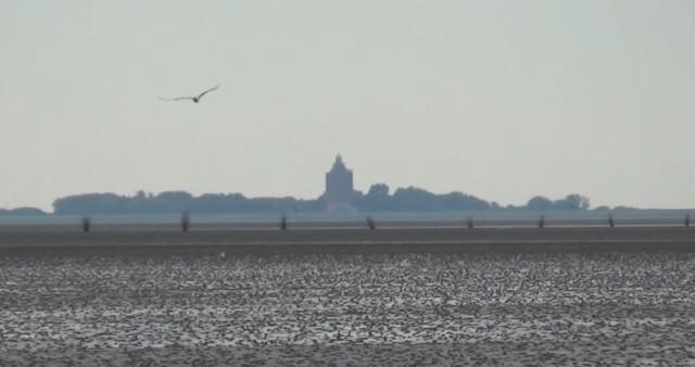 Insel Neuwerk  - Cuxhaven Neuwerk mit Kutsche oder zu Fuß