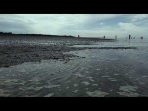 Gezeiten Duhnen – Cuxhaven Gezeiten Duhnen mit Ebbe und Flut