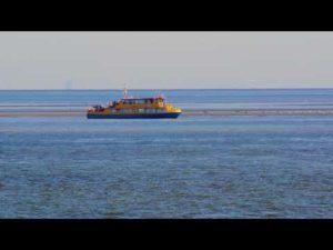 Seehundbänke Cuxhaven – Ausflug zu den Seehundbänke