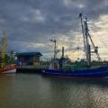 Krabbenfischer im Hafen von Dorum 3 120x120 - Wurster Nordseeküste mit Leuchtturm in Dorum im Landkreis Cuxhaven