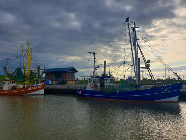 Krabbenfischer im Hafen von Dorum 3 - Sielhafen in Dorum-Neufeld - Yachthafen an der Wurster Nordseeküste