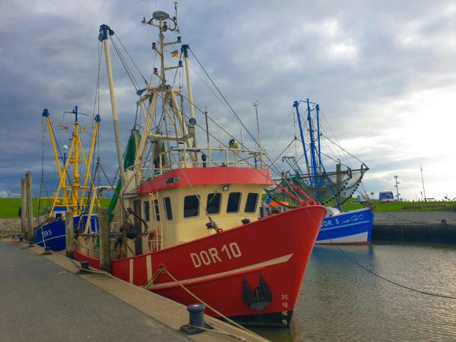 Krabbenfischer im Hafen von Dorum 5 - Sielhafen in Dorum-Neufeld - Yachthafen an der Wurster Nordseeküste