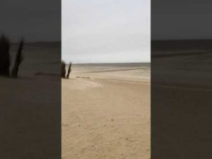 Heftige Sandverwehungen: Watt und Strand Sturm Tristan