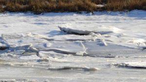 Spieka-Neufeld bei Cuxhaven im Schnee