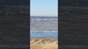 Stark vereiste Nordsee im Sonnenschein Cuxhavener Watt voller Eisschollen