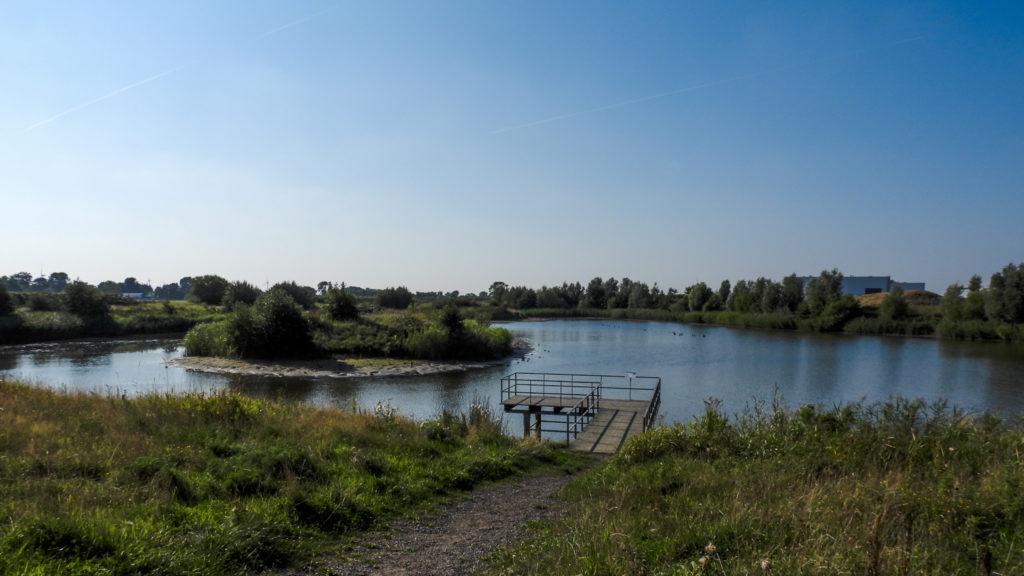 Biotop am Altenbrucher Hafen